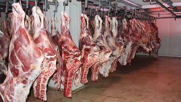 گوشت قرمز گران تر می شود